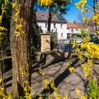 dexheim-brunnen-3301154.jpg