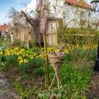 dexheim_rathausgarten-3140782.jpg