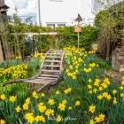 dexheim_rathausgarten-3140784.jpg