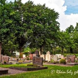 image de Friedhof