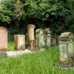 image de Jüdischer Friedhof