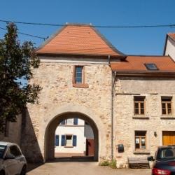 image de Das Dexheimer Schloss
