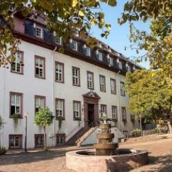 image de Das Leininger Schloss